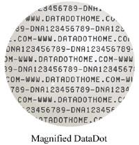 Magnified DataDot